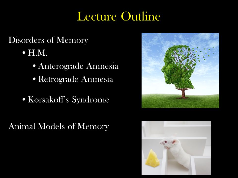 Lecture Outline Disorders of Memory H.M. Anterograde Amnesia