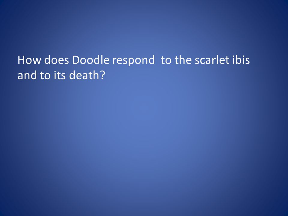 How does Doodle respond to the scarlet ibis and to its death