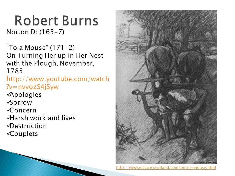 Robert Burns Norton D: (165-7) To a Mouse (171-2)
