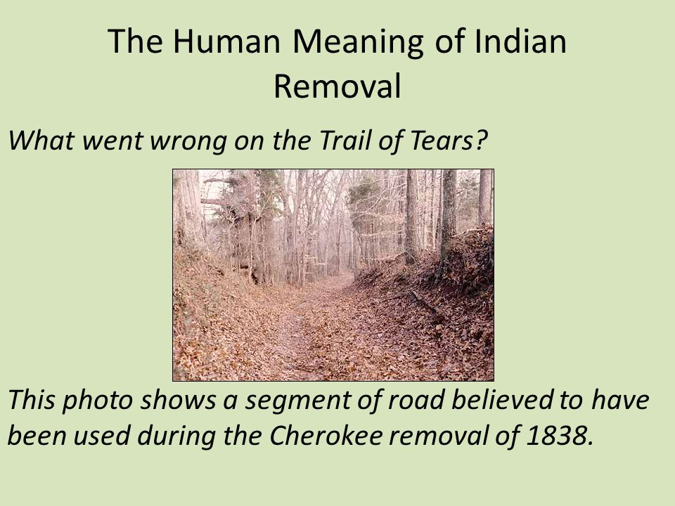 The Human Meaning of Indian Removal
