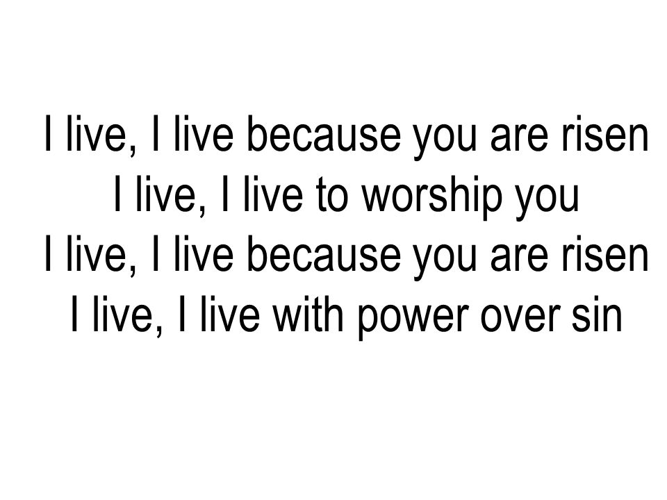 I live, I live because you are risen I live, I live to worship you