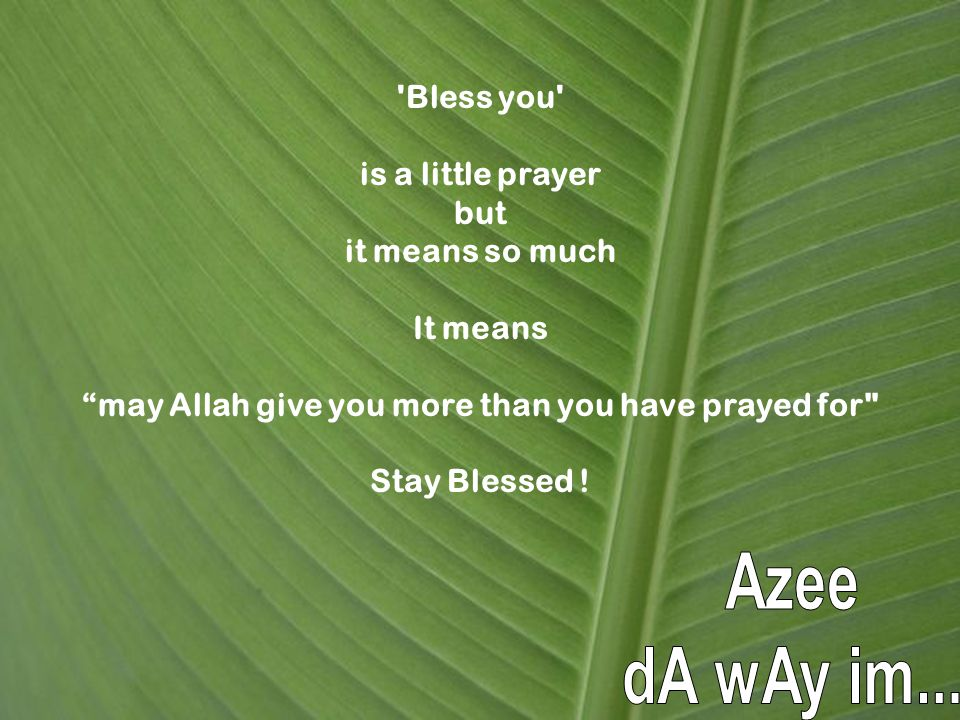 Bless you is a little prayer but it means so much It means