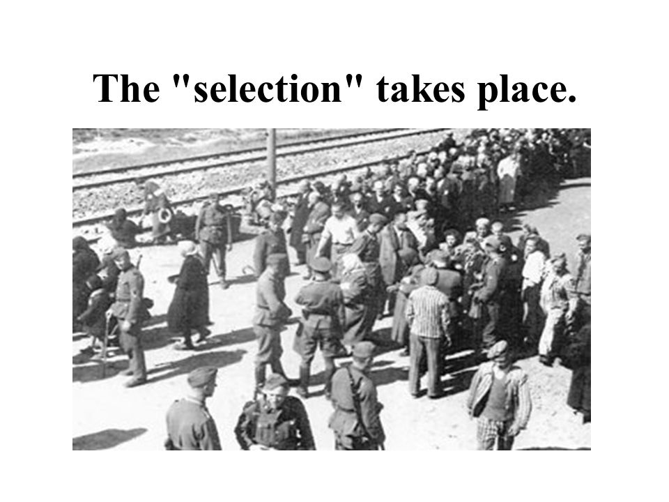 The selection takes place.