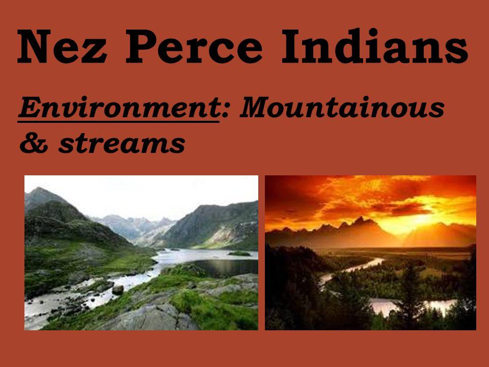 Nez Perce Indians Environment: Mountainous & streams