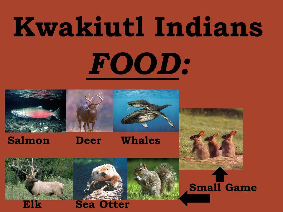 Kwakiutl Indians FOOD: Salmon Deer Whales Small Game Elk Sea Otter