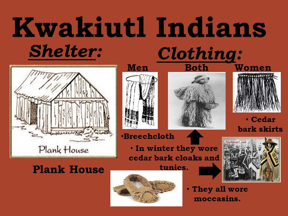 NATIVE AMERICANS BY: Lauren Powers. - ppt download