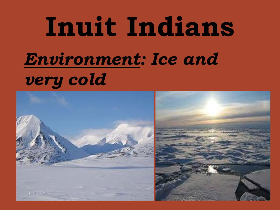 Inuit Indians Environment: Ice and very cold