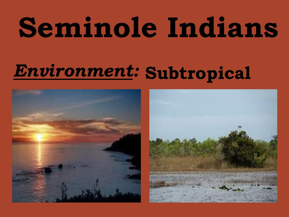 Seminole Indians Environment: Subtropical