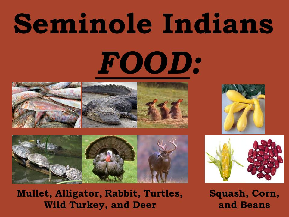 Seminole food recipes food for American indian cuisine