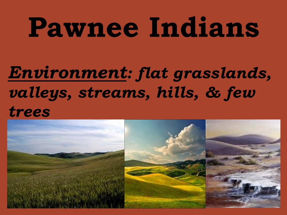 Pawnee Indians Environment: flat grasslands, valleys, streams, hills, & few trees