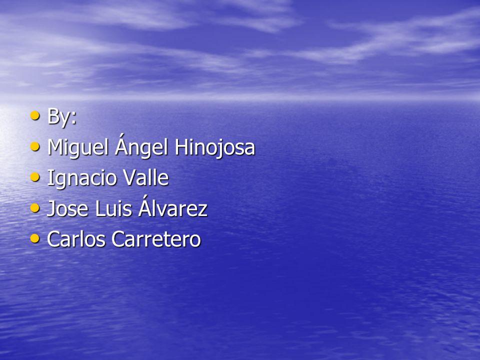 By: Miguel Ángel Hinojosa Ignacio Valle Jose Luis Álvarez Carlos Carretero