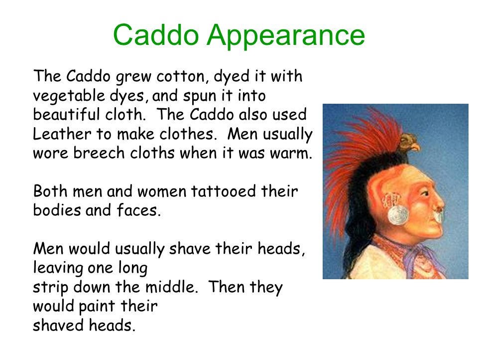 Caddo Appearance The Caddo grew cotton, dyed it with vegetable dyes, and spun it into beautiful cloth. The Caddo also used.
