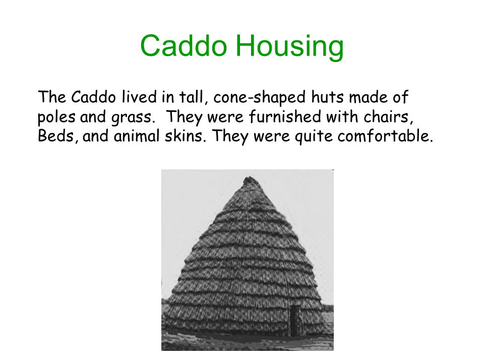 Caddo Housing The Caddo lived in tall, cone-shaped huts made of