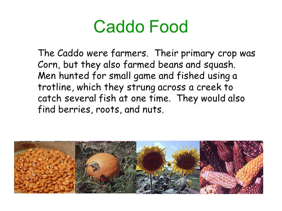 Caddo Food The Caddo were farmers. Their primary crop was