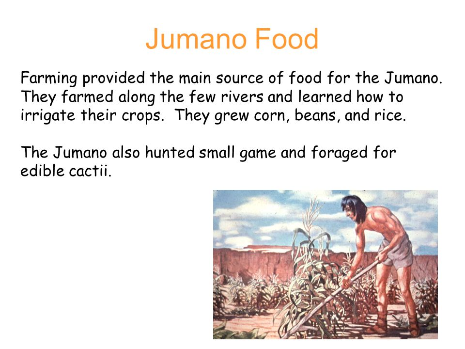 Jumano Food Farming provided the main source of food for the Jumano.