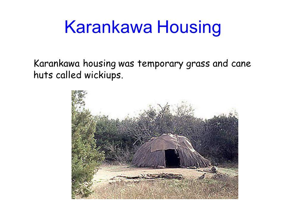Karankawa Housing Karankawa housing was temporary grass and cane