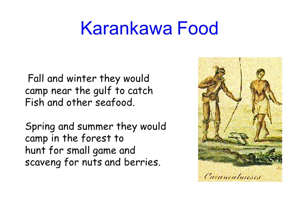 Karankawa Food Fall and winter they would camp near the gulf to catch
