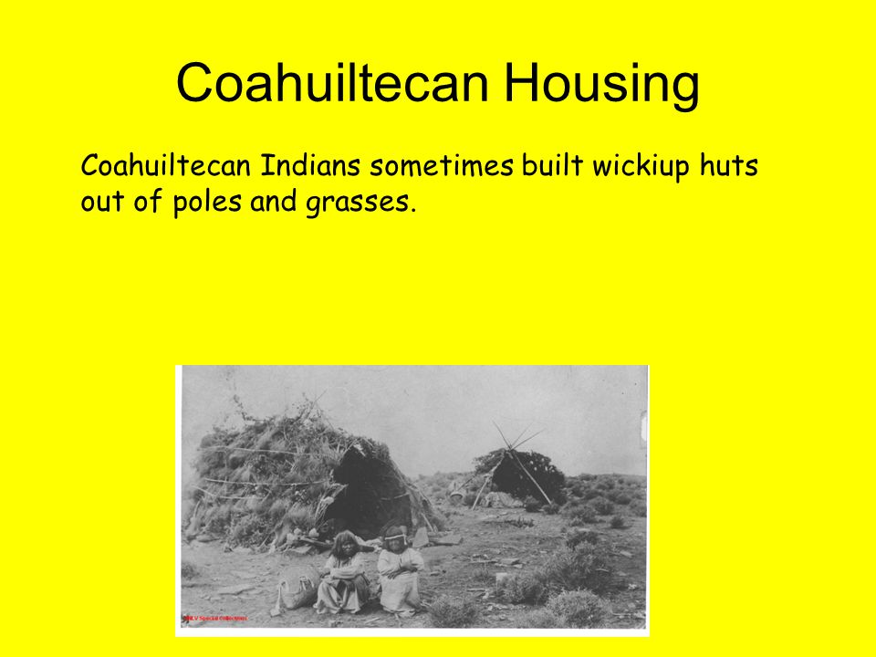 Coahuiltecan Housing Coahuiltecan Indians sometimes built wickiup huts