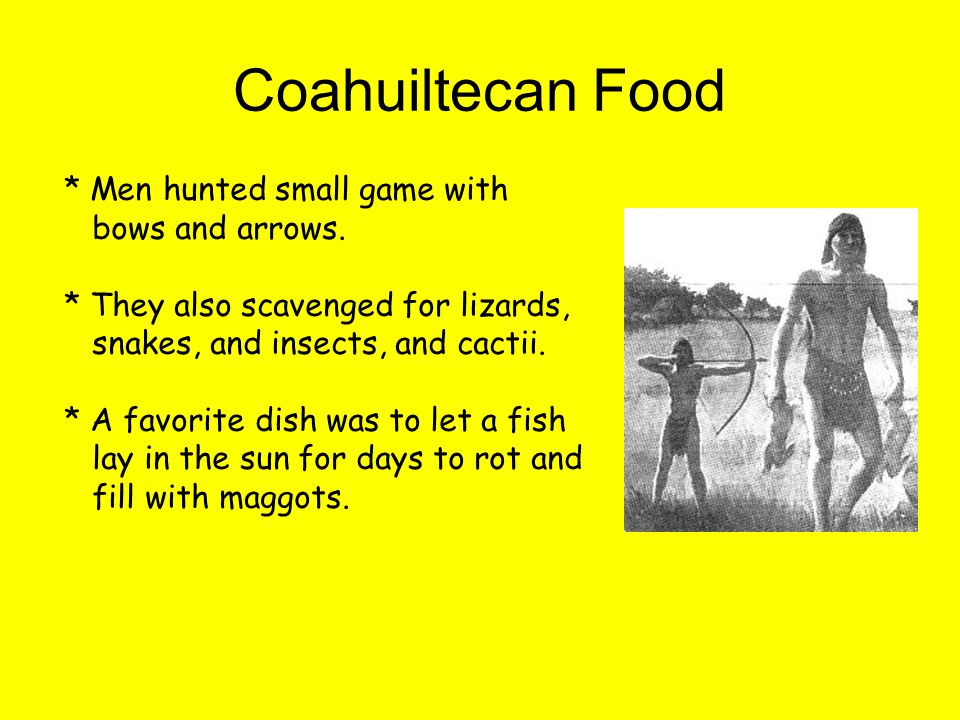 Coahuiltecan Food * Men hunted small game with bows and arrows.