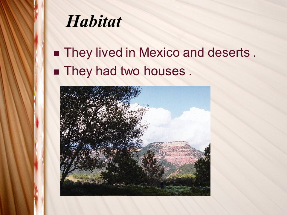 Habitat They lived in Mexico and deserts . They had two houses .