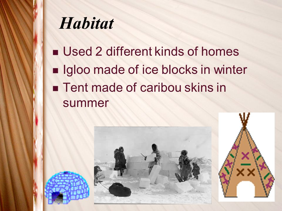 Habitat Used 2 different kinds of homes