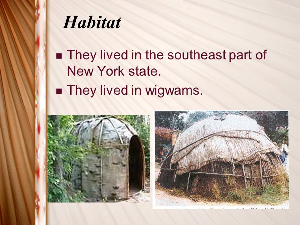 Habitat They lived in the southeast part of New York state.