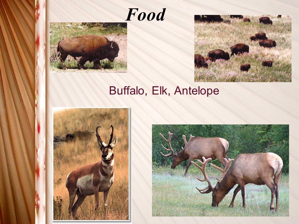 Food Buffalo, Elk, Antelope