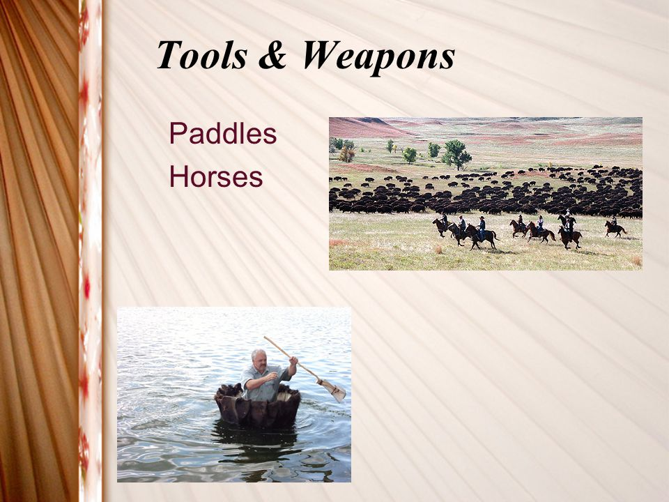 Tools & Weapons Paddles Horses