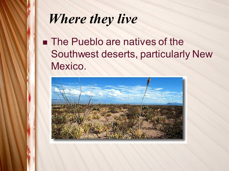 Where they live The Pueblo are natives of the Southwest deserts, particularly New Mexico.