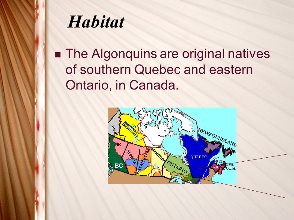 Habitat The Algonquins are original natives of southern Quebec and eastern Ontario, in Canada.