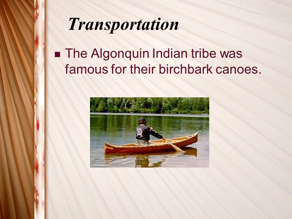 Transportation The Algonquin Indian tribe was famous for their birchbark canoes.