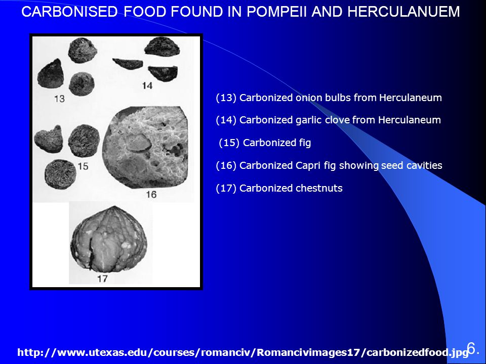 6. CARBONISED FOOD FOUND IN POMPEII AND HERCULANUEM