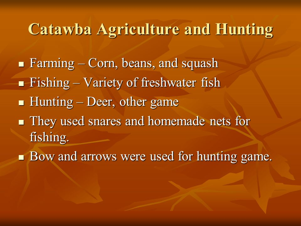 Catawba Agriculture and Hunting