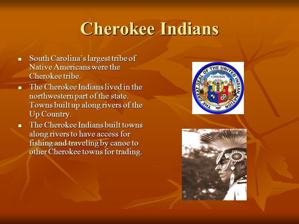 Cherokee Indians South Carolina's largest tribe of Native Americans were the Cherokee tribe.