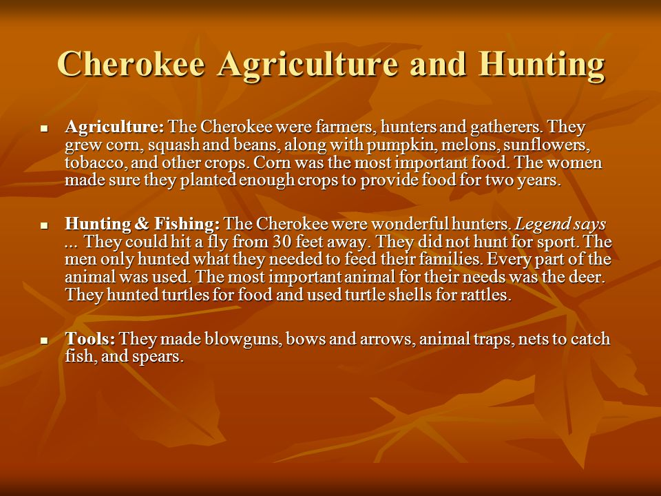 Cherokee Agriculture and Hunting