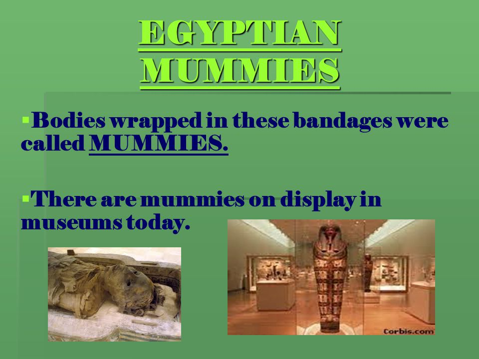 EGYPTIAN MUMMIES Bodies wrapped in these bandages were called MUMMIES.