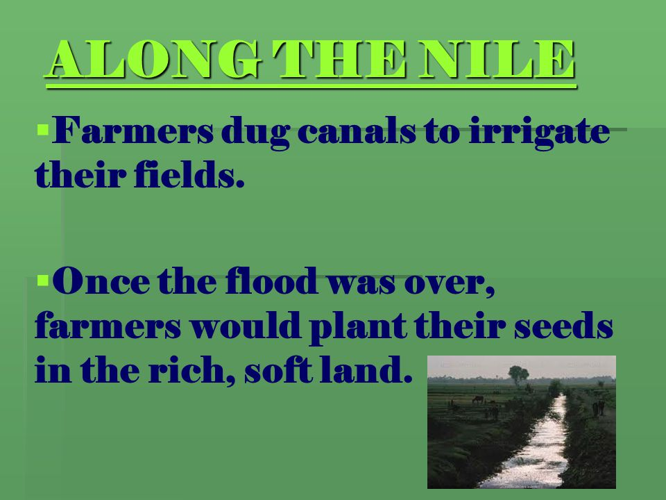 ALONG THE NILE Farmers dug canals to irrigate their fields.