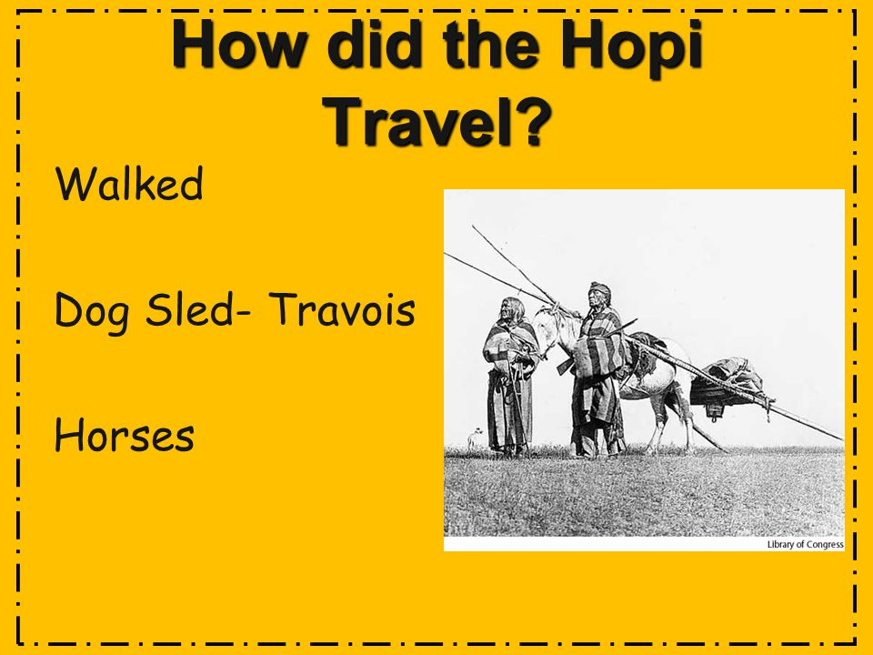 How did the Hopi Travel Walked Dog Sled- Travois Horses