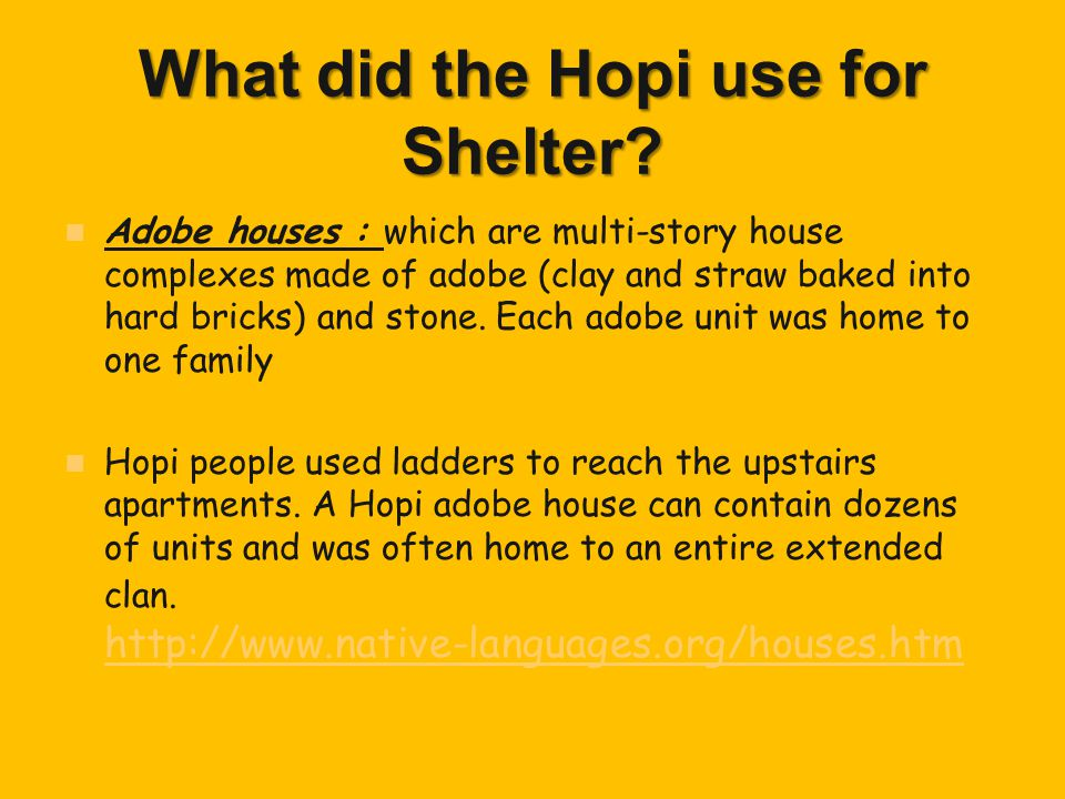 What did the Hopi use for Shelter