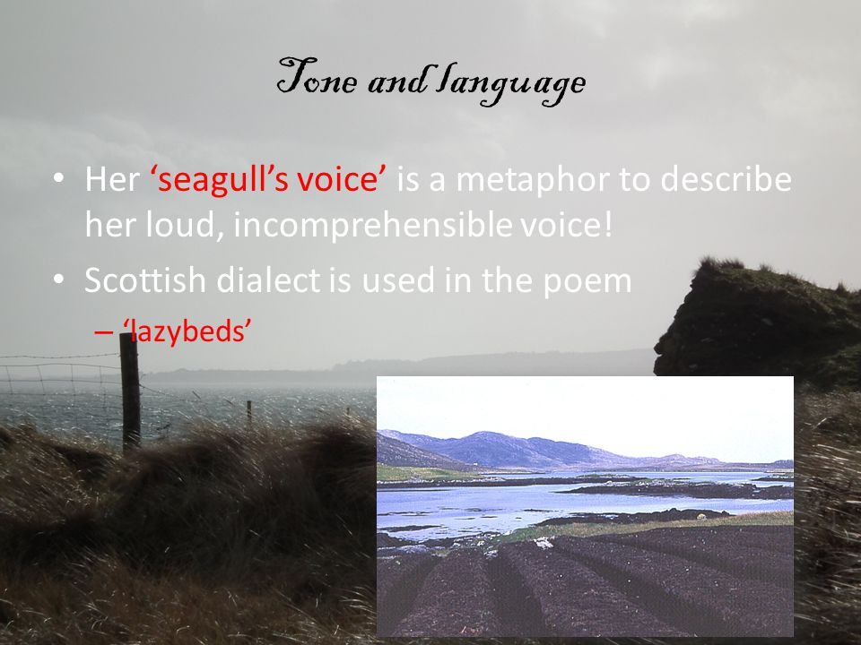 Tone and language Her 'seagull's voice' is a metaphor to describe her loud, incomprehensible voice!