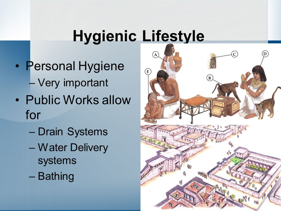 Hygienic Lifestyle Personal Hygiene Public Works allow for