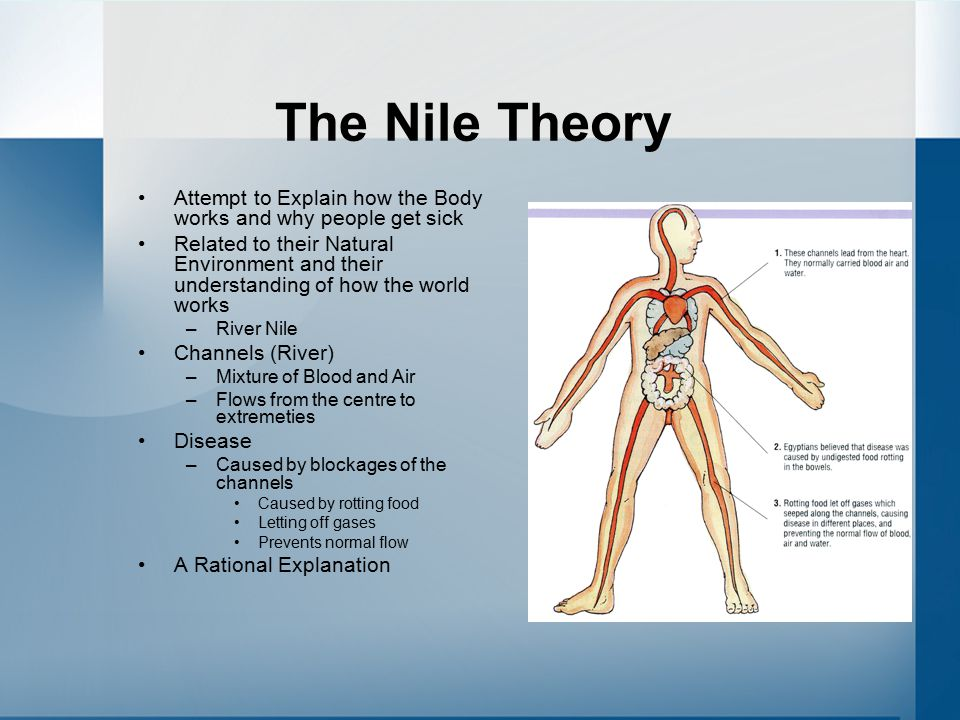 The Nile Theory Attempt to Explain how the Body works and why people get sick.