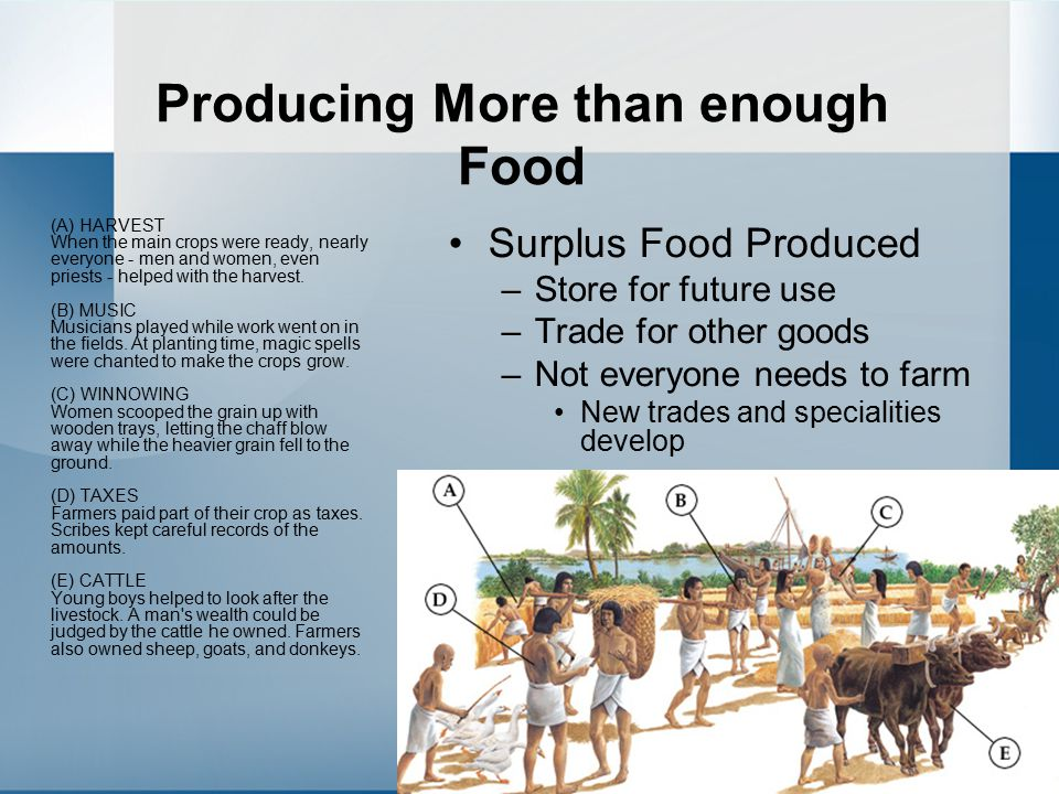 Producing More than enough Food