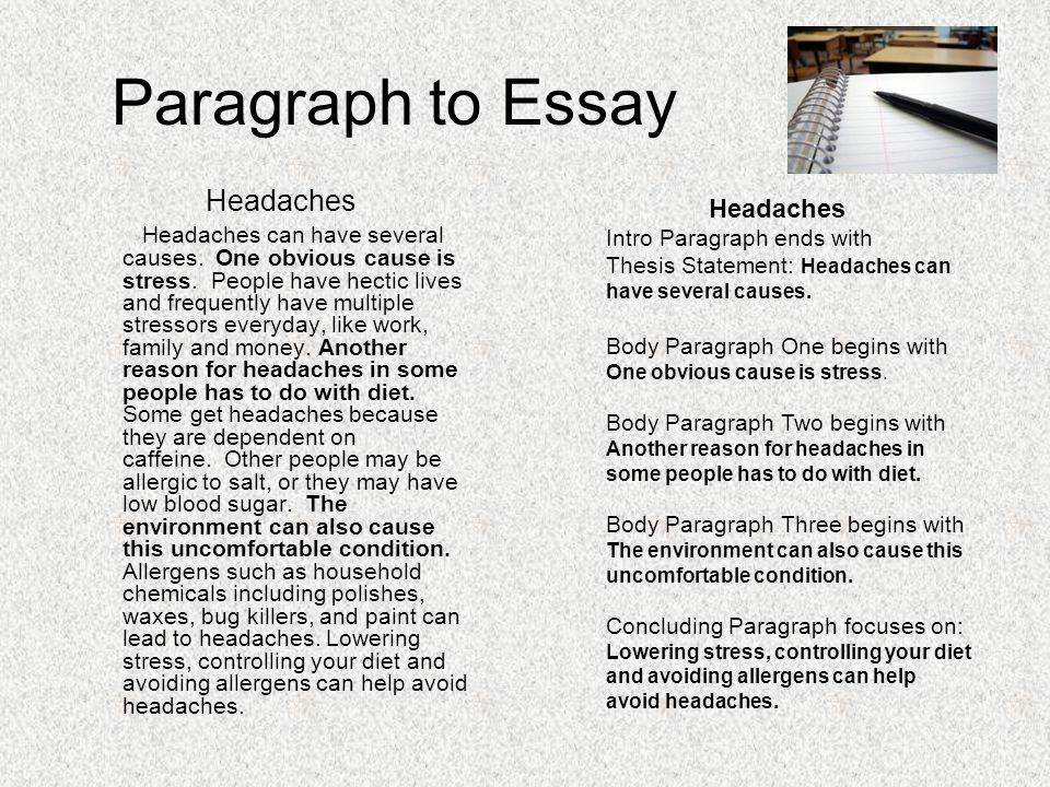 writing essays ppt paragraph to essay headaches headaches