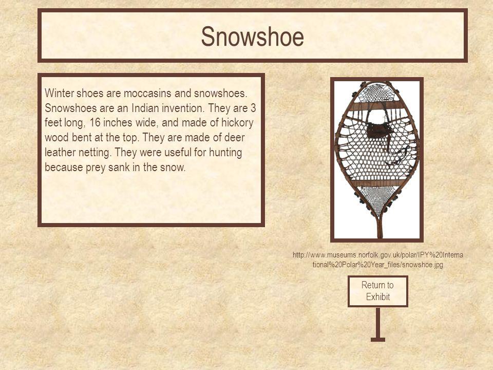 Snowshoe