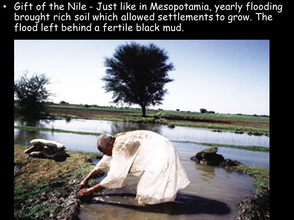 Gift of the Nile - Just like in Mesopotamia, yearly flooding brought rich soil which allowed settlements to grow.