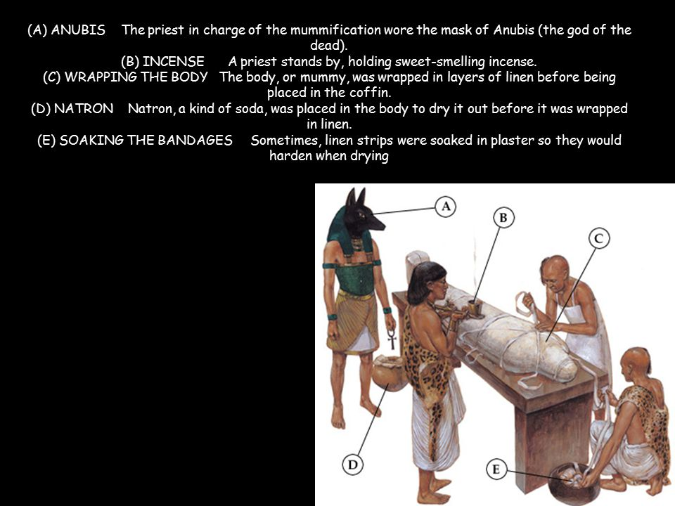 (A) ANUBIS The priest in charge of the mummification wore the mask of Anubis (the god of the dead).