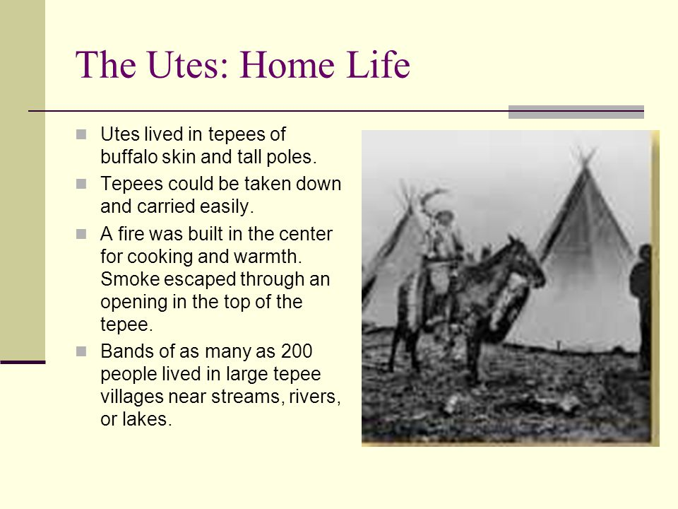 The Utes: Home Life Utes lived in tepees of buffalo skin and tall poles. Tepees could be taken down and carried easily.
