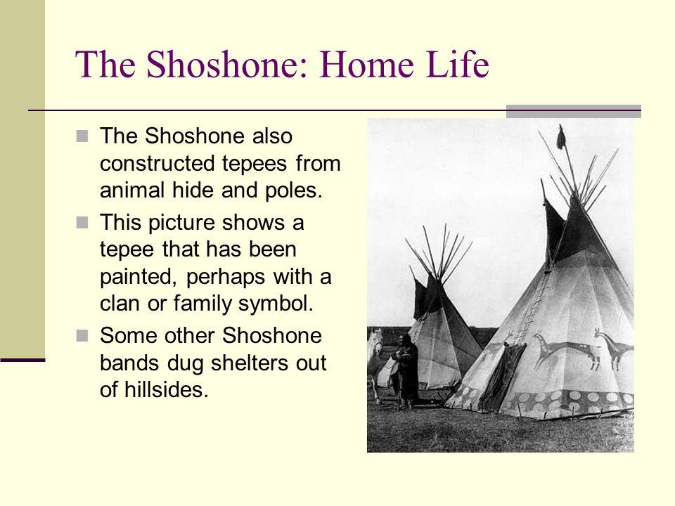 The Shoshone: Home Life
