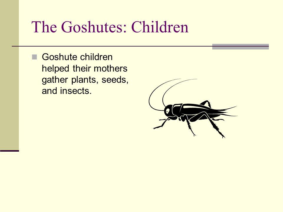The Goshutes: Children